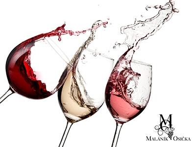Wine & Gallery - degustace 19. března